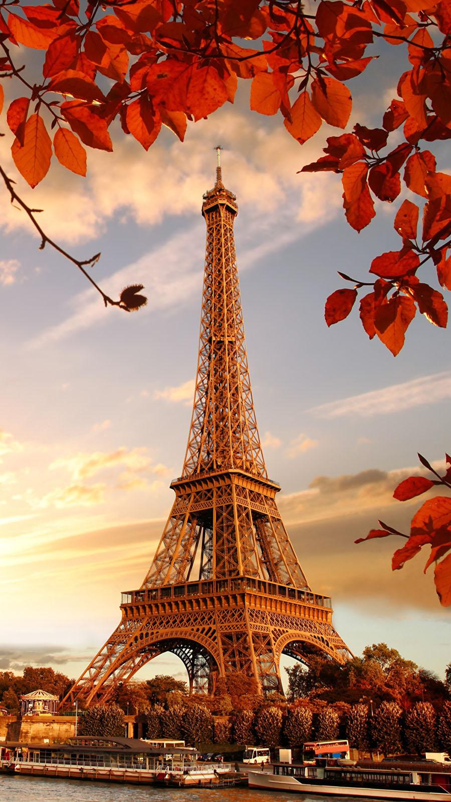 fond-decran-smartphone-tour-eiffel-arbre-magnifique